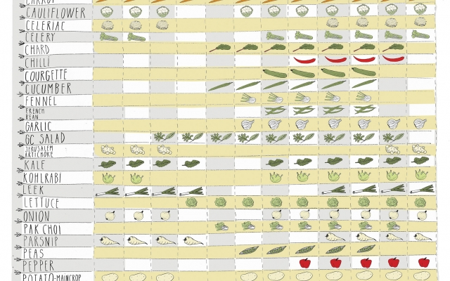 Seasonal veg chart